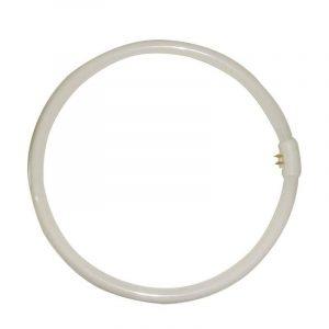 Eurolamp Λάμπα Φθορισμού Κυκλική T9 22W/865 240V